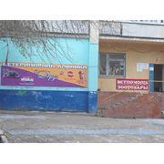 Ветеринарная клиника «Друг» фото