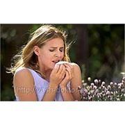 Консультация пульмонолога, диагностика бронхиальной астмы, бронхита, воспаления легких; одышка, кашель фото