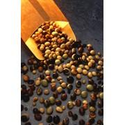 Экспорт семян бобовых культур фото