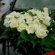 Украшение свадебного автомобиля. фото