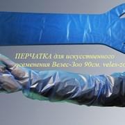 Перчатка ветеринарная для искусственного осеменени фото