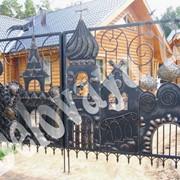 Ворота V5101 фото