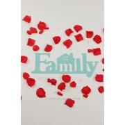 """Декор-надпись """"Family"""" с домиком / мята фото"""