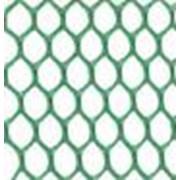 Сетки пластиковые для сада и огорода код Ф ячейка 8х6 фото