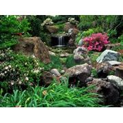 Устройство водопадов в саду фото