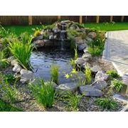 Декоративные ручьи и водоемы фото