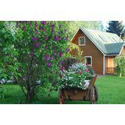 Дизайн сада в русском стиле. фото