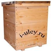 Улей 12 рамочный + 1 магазин (Дадан) фото