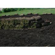 проектирование дизайна Вашего сада рулонные газоны пруды и водопады фото