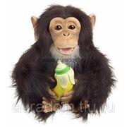HASBRO обезьянка «Хочу на ручки» фото