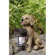 Фонарь садовый Собака с фонарем арт. R023 фото