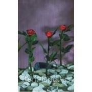 Фонарь садовый ( набор 3шт) Арт. 72237 фото