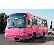 Лобовые(ветровые) стекла для автобусов ПАЗ (КАВЗ) 4230 фото