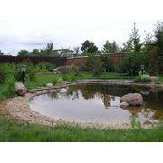 Строительство водоемов устройство прудов фото
