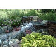 Водоемы садовые - проектирование и строительство фото