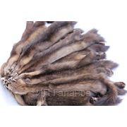 Шкурки соболя, выделанные, цвет «седой» фото