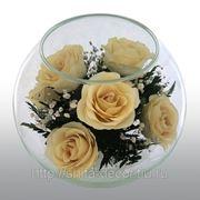 Артикул - BMR4 Композиция из натуральных роз. Размер: h-12.5 d-16см фото