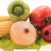 Услуги экспертизы и сертификации продуктов питания в Костанае фото