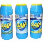 Чистящий порошок ГАЛА 500 г. фото