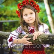 Услуги фотографа Бровары фото