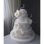 Торт cвадебный №0249 код товара: 1-0249 фото