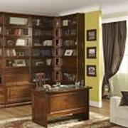 Мебель для домашней библиотеки фото
