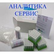 Тест на антибиотики в молоке Дельвотест BLF фото