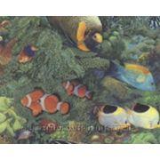 7655-12 Обои A.S. Creation Faro фото
