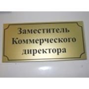 Именная офисная табличка на дверь 200 х 100