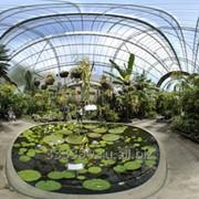 Сады зимние из светопрозрачных конструкций фото
