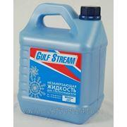 """Стеклоомыватель зимний """"GolfStream"""" 4 литра евроканистра фото"""