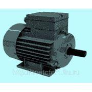 Электродвигатель АИМЛ 0,55КВТ фото