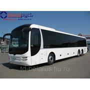Автобус ман междугородний man lion's regio r13 фото