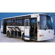 Автобус КАВЗ-4235-31 межгород и пригород фото