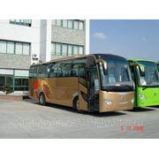 Автобус ShenLong (ШенЛонг) фото