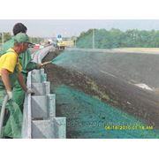 Озеленение , гидропосев , дизайн , газоны в Калининграде фото
