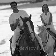 Романтическая прогулка на лошадях фото