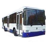 Автобусы НЕФАЗ-5299 фото