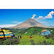Комбинированный тур «К вулканам и гейзерам с рыбалкой на реке Быстрой» фото