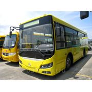 Городкой автобус Golden Dragon XML6845 фото