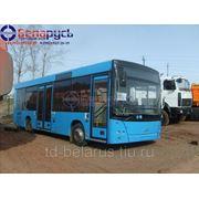 Автобус ман низкопольный на 25 мест, общая вместимость 72 МАЗ 206060 в Красноярске фото
