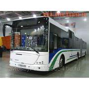 Автобус - НЕФАЗ - 52995 фото