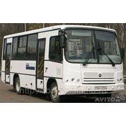 Автобус ПАЗ 320402-05 город и пригород фото