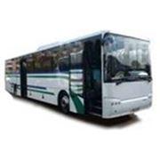 Междугородный автобус НЕФАЗ-52996 фото