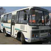 Автобус ПАЗ 32053 бенз-й и ПАЗ 32053-07 диз-ый фото