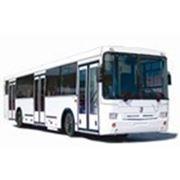 Городской автобус НЕФАЗ-5299-20-33 фото