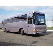 Автобусы НЕФАЗ городские, пригородные, междугородные, фото