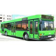 Автобус МАЗ-103465 городской фото