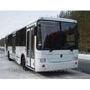 Автобус НЕФАЗ-5299-30-33 низкопольный фото