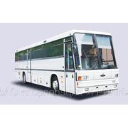 Междугородние и туристические автобусы МАЗ фото
